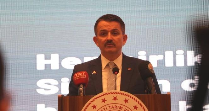 Bakan Bekir Pakdemirli, yeni sezon üzüm alım fiyatını açıkladı