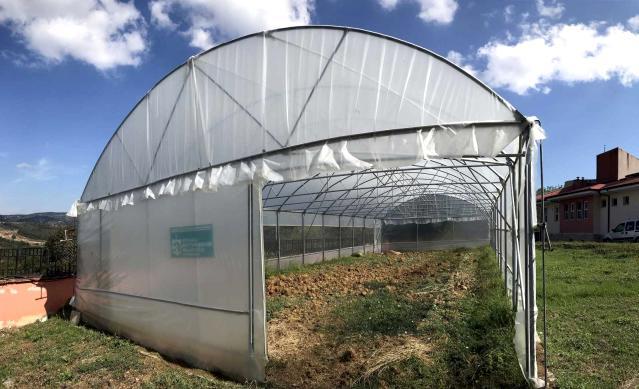 Özel bireyler, serada sebze yetiştirilerek rehabilite ediliyor